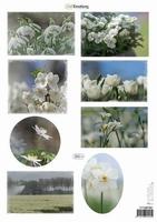 A4 Knipvel CraftEmotions 117140/1001 Voorjaarsbloemen