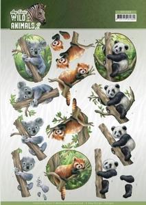 3D Knipvel Amy Design CD11300 Wild Animals 2 Bears/beren