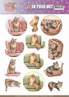 Amy Design Cats World 3D Pushout SB10382 Show Cats