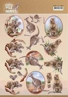 Amy Wild Animals Outback 3D Knipvel CD11483 Kangaroo/koala