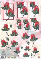 Card deco PushOut POC10005 Rode rozen