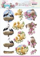Amy Design Enjoy Spring 3D Pushout SB10540 Birds/vogels