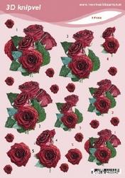 3D Knipvel A5 Voorbeeldkaarten 004 Bloemen rozen