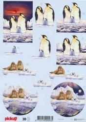 3D Knipvel Pick UP Pu065 Dieren/pinguins-walrussen