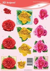 3D Knipvel VBK2052 rozen