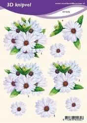 3D Knipvel A5 Voorbeeldkaarten 035 Bloemen margrieten
