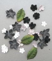 Paper Flowers Marianne D CP8920 black & white/zwart wit