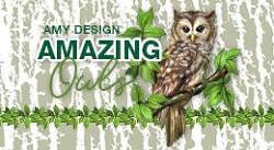 - Collectie 2020 Amazing Owls