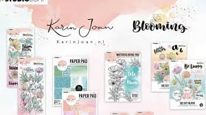 - Karin Joan