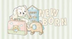 Collectie 2021 Newborn